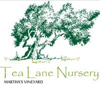 Tea Lane Nursery