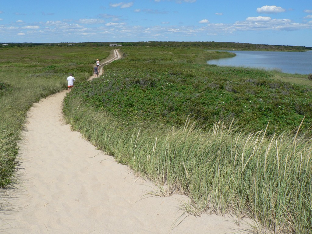 Long Point Wildlife Refuge beach