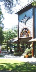 Martha's Vineyard Community