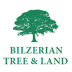Bilzerian Tree & Land Martha's Vineyard