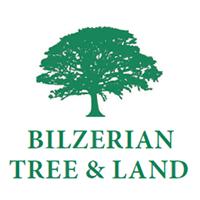 Bilzerian Tree & Land Martha's Vineyard