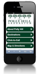 Polly Hill Arboretum