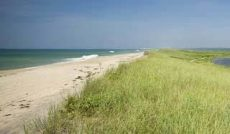 A view of Long Point beach on Martha's Vineyard