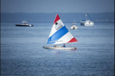 A Sunfish sailboat cruises on the water.